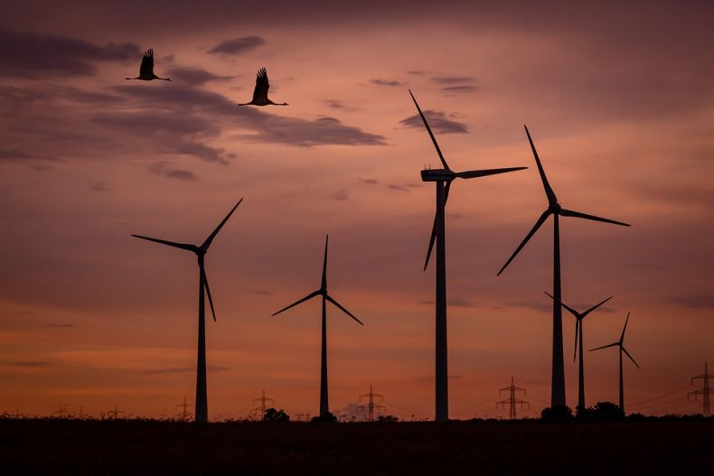 Renewable Energy Sources can be made Wildlife Friendly