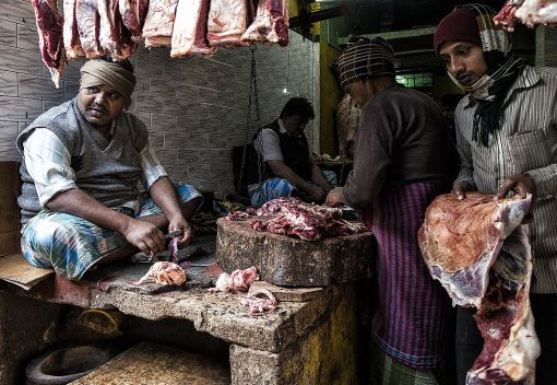 The Slaughter of Wildlife for Meat in Sabah and Sarawak must Stop