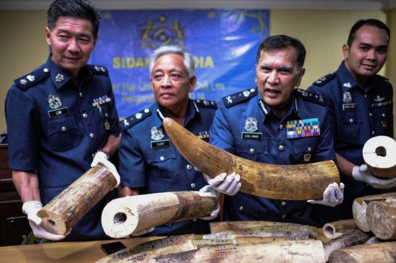 Malaysia Airlines declares a Zero-Tolerance Policy on Wildlife Trafficking