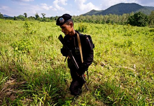 Serve to Protect: a new team of Wildlife Rangers will hit Sabah's Forests